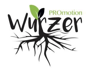 kLuftschloss-Logo-Promotion-Wurzer